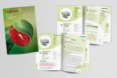 Буклет о Генфероне (Biocad)