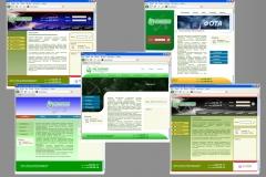 Сайт Пал Системз